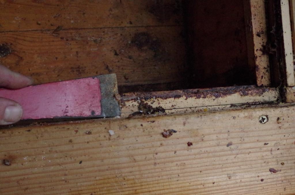 <strong>In der Zwischenzeit werden die Holzbeuten gründlich abgekratzt, das Abgekratzte sorgfältig gesammelt/entsorgt...</strong>