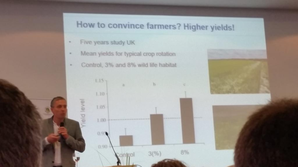 """Trotz des """"Flächenverbrauchs"""" durch Blühstreifen wächst der Ernteertrag der Landwirte um bis zu 8%!"""