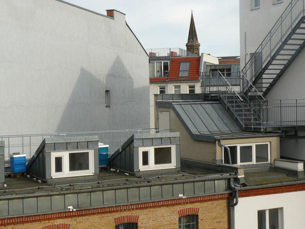 Bienenstand auf dem Dach in Berlin-Mitte