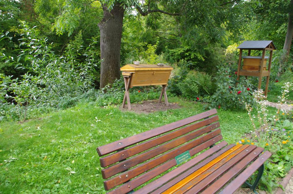 Bienengarten mit Top-Bar-Hive