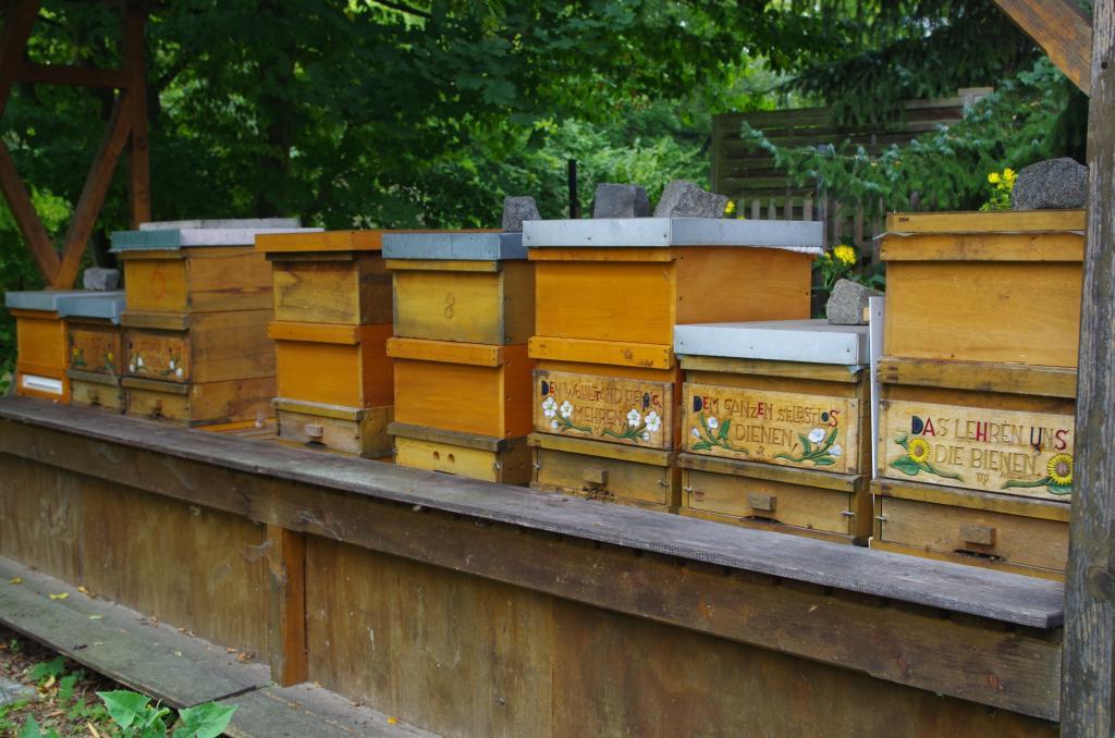 Ein Bienenstand summt im Garten<br />