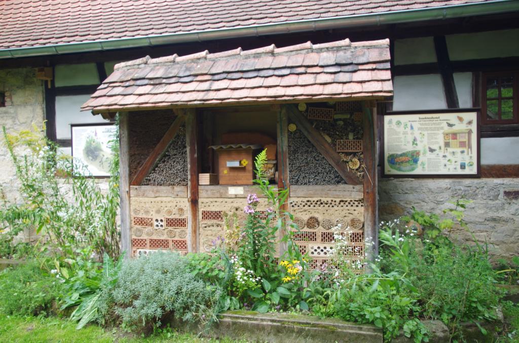 Eine Wildbienennistwand
