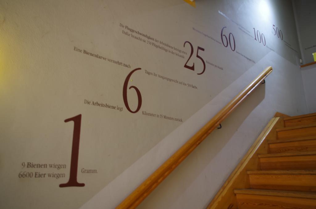 Zur Ausstellung geht es zwei Treppen hoch - mit passendem Wandschmuck
