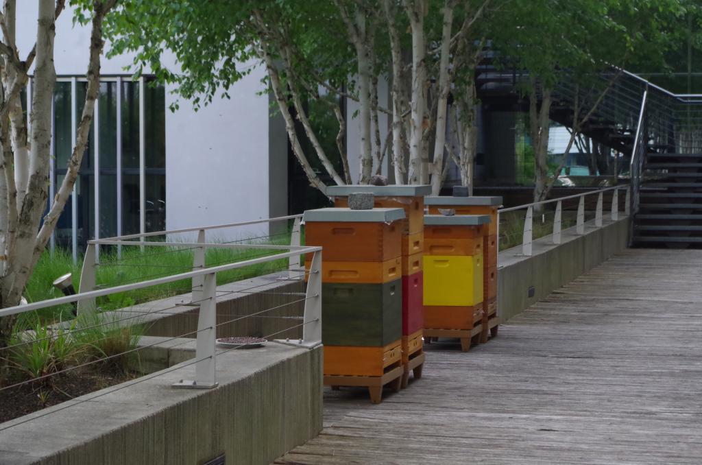 Die Bienenvölker in der Botschaft (Bild: Melanie von Orlow)
