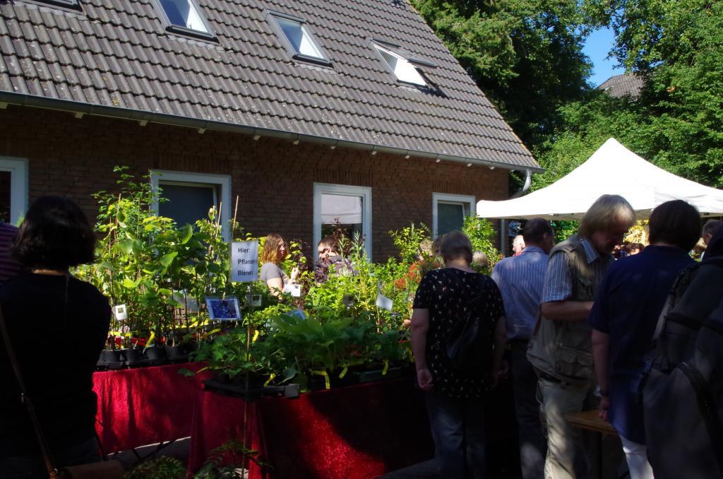 """Am Angebot des """"Immengartens Jaesch"""" konnte man wieder kaum vorüber gehen - viele bienenenfreundliche Blütenpflanzen für den Garten lockten verführerisch!"""