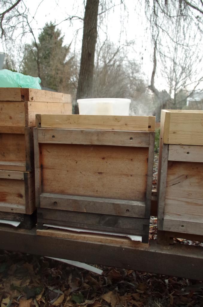 Fluglöcher und Bodengitter wurden zuvor verschlossen. Bald dringt stechender Qualm aus den Ritzen der Beute. Die Bienen brausen auf und fallen prasselnd sterbend auf den Boden.